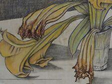 Sartorius firmado acuarela-lápiz de dibujo: - Still vida marchita flores con un jarrón
