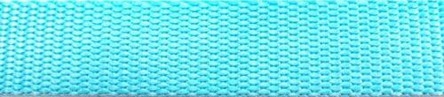 1 Inch Heavy Nylon Webbing  Turquoise Blue  10 Yards ~ NW7241