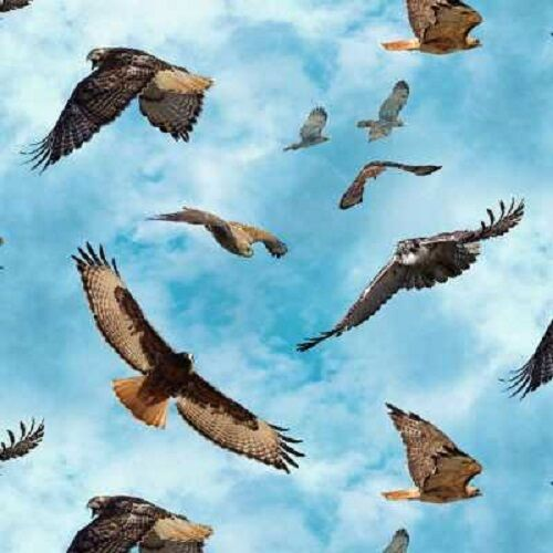 Red Tail Hawk BTY COTTON Elizabeth/'s Studio North American Wildlife 451 Blue