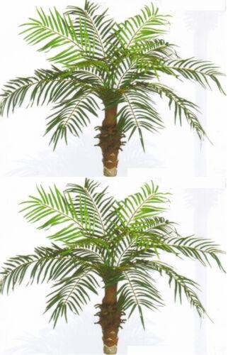 2 ARTIFICIAL 3' PHOENIX PALM TREE PLANT SILK BUSH POOL PATIO DECK ARRANGEMENT