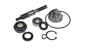 Albero Pompa Acqua Completo Honda @ 125-150 Dylan 125-150 Sh 125-150 Pantheon 125