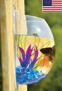 Fish Tank Bowl Bubble Aquarium Goldfish Hanging Terrarium Wall Mounted Betta OCC