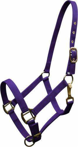 Triple Ply Nylon Western Horse Halter w// Brass Hardware