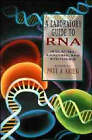 A Laboratory Guide to RNA: Isolation, Analysis and Synthesis by John Wiley and Sons Ltd (Paperback, 1996)