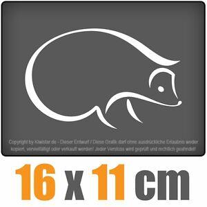 Igel-16-x-11-CM-JDM-decal-sticker-coche-car-blanco-discos-pegatinas