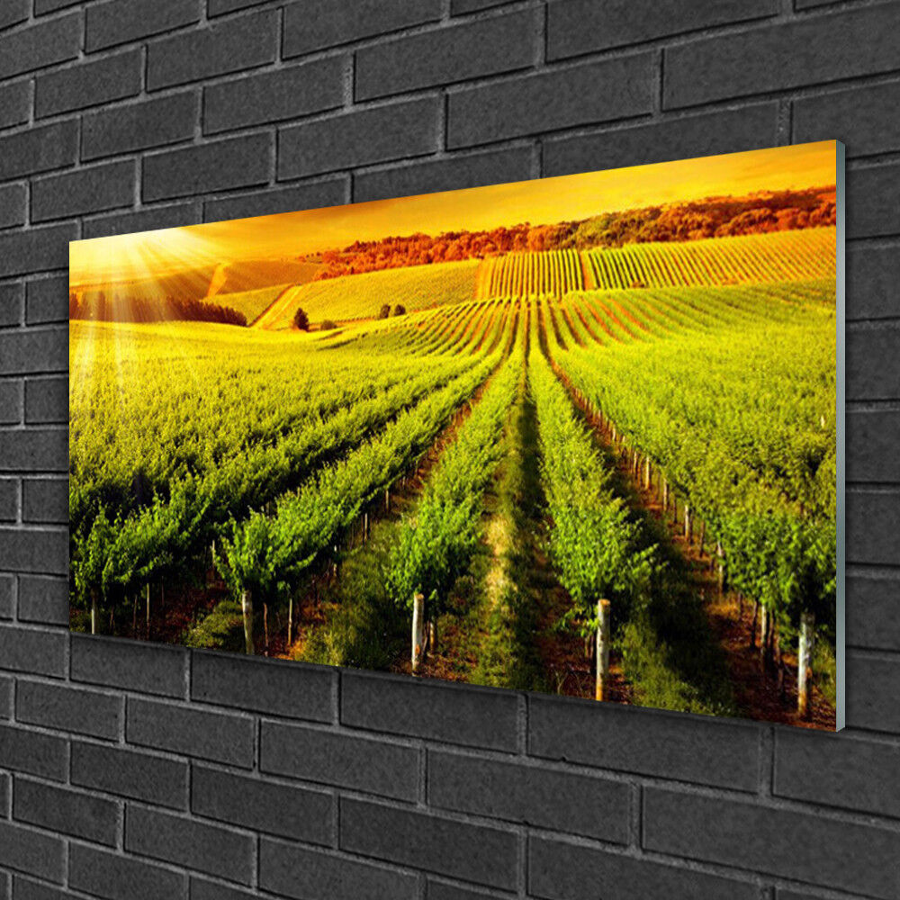 Glass print Wall art 100x50 Image Picture Field Nature