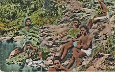c1910 Hawaiian Naked Bathers in Bushes, Mitchell Unused Tinted Postcard