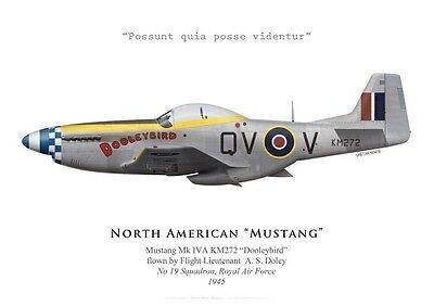Squadron RAF Andrzej Czerwinski by G. Marie Polish 315 Print Mustang III