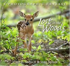 Lost in the Woods : A Photographic Fantasy (2004, Hardcover)