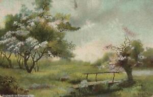 1909-Vintage-ORCHARD-in-COCKINGTON-Postcard-sent-to-9-Edwin-St-Gordon-Sydney