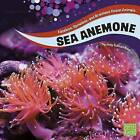 Sea Anemones by Jody Sullivan Rake (Hardback, 2016)