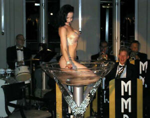 DITA-VON-TEESE-4x5-PICTURE-PRIVATE-PARTY-GLASS-PHOTO
