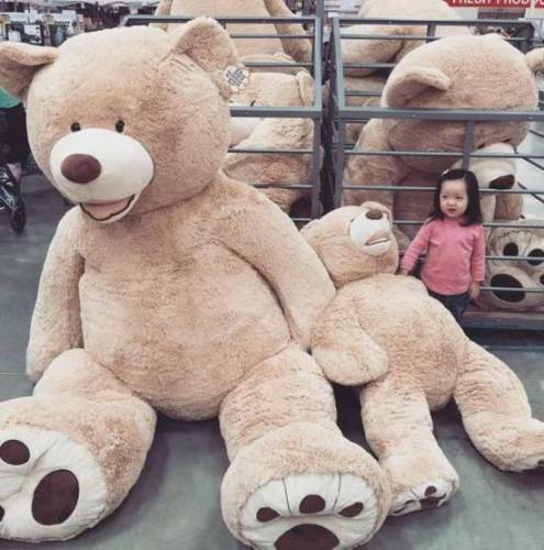 "78/"" 200 cm Brown Giant Skin Teddy Bear Big Stuffed Toy Christmas Gift Hot"