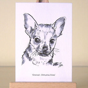 Chihuahua Mix ~ sensitive and confident ACEO Art Card drawing