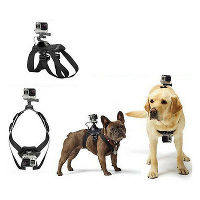 Pet Dog Harness Chest Back Mount Strap Camera Accessory for GoPro Hero 4 3+ 3