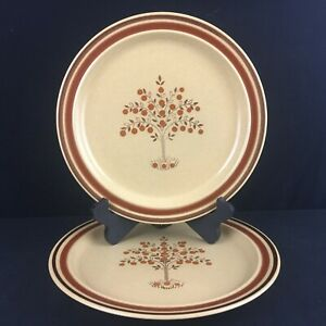Set-of-2-VTG-Dinner-Plates-by-Newcor-Romantic-Stoneware-152-Fruit-Trees-Japan