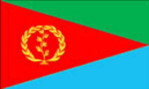 3' x 2' ERITREA FLAG Eritrean Flags Africa African
