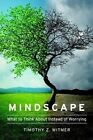 Mindscape: What to Think about Instead of Worrying by Timothy J Witmer (Paperback / softback, 2014)
