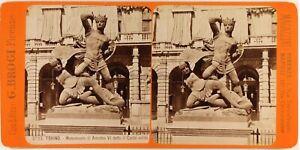 Italia Torino Monumento Amedeo VI c1880 Foto Stereo Brogi Vintage Albumina