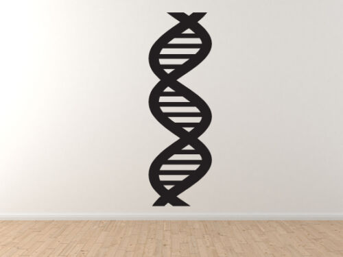 Vinyl Wall Decal DNA Helix Biology Chemistry Genetic Protein Medical #5