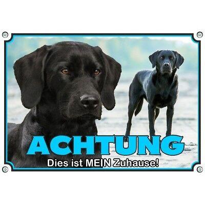 2019 Neuer Stil Hundeschild Labrador Retriever - Wetterfestes Premiumschild Aus Metall Novel (In) Design;