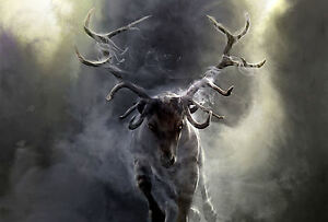 Framed-Print-Stag-Charging-through-the-Mist-Picture-Deer-Animal-Bear-Fox-Art