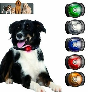Orbiloc-Dog-Safety-Light-Clips-Onto-Your-Dogs-Collar-For-Night-Pet-Safety