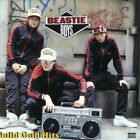 Solid Gold Hits [PA] by Beastie Boys (CD, Nov-2005, 2 Discs, EMI)