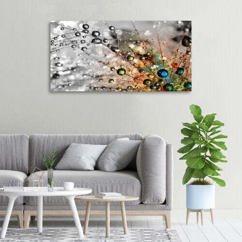 Leinwandbild Kunst-Druck 100x50 Bilder Blumen /& Pflanzen Löwenzahnsamen