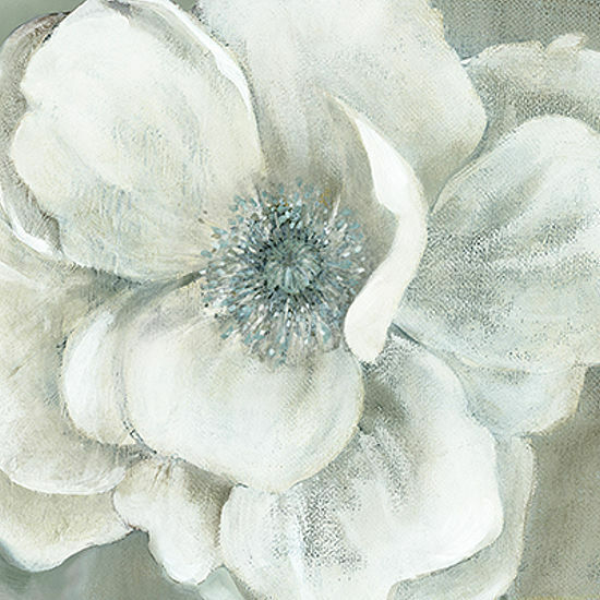 Carol Robinson  Opalescence II Keilrahmen-Bild Leinwand Blüte weiss floral Blaume