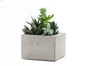 Square-Concrete-Mini-Planter-Flower-Pot-Handmade-Home-amp-Garden-Decor-Gray