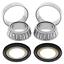 Steering Stem Bearing Kit For 2012 Honda CRF150R~All Balls 22-1021