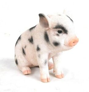 pig sitting baby pig with black spots life like figurine statue home