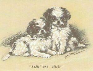 Japanese Spaniel Puppy - MATTED Dog Print - Lucy Dawson