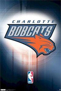 CHARLOTTE-BOBCATS-SPOTLIGHT-LOGO-22X34-Basketball-NBA-North-Carolina