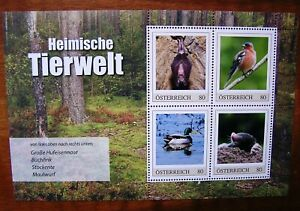 ME4-Heimische-Tierwelt-Hufeisennase-Buchfink-usw-Oster-4W-KB-PM-2019