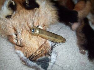 Pete Rickards Coyote Howler Call