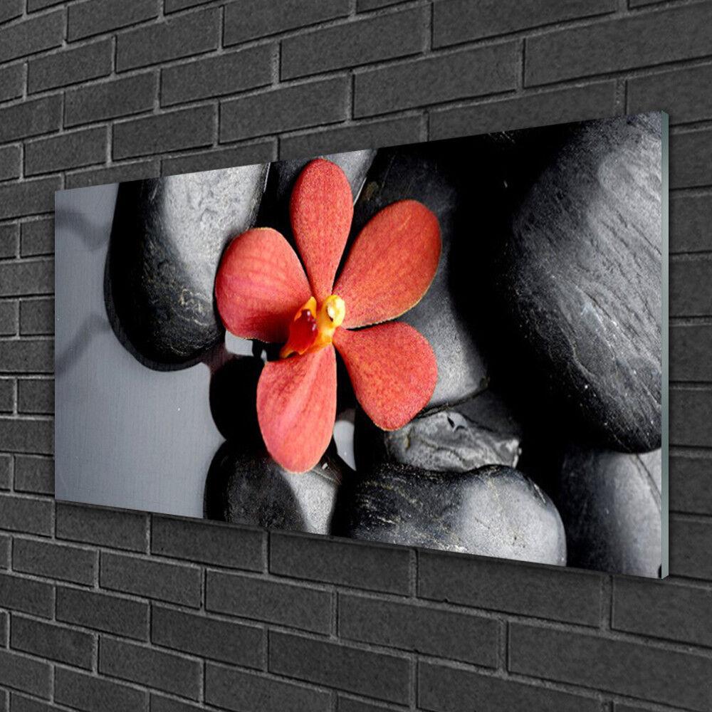 Image sur verre acrylique Tableau Impression 100x50 Kunst Fleur Pierres