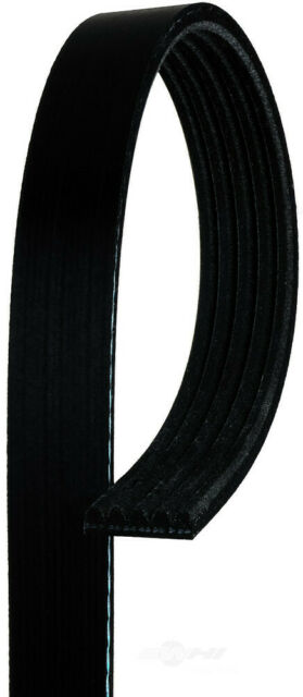 AC DELCO 5K355 Replacement Belt