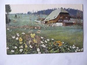Ansichtskarte-Schwarzwald-Triberg-1915-Kuenstlerkarte