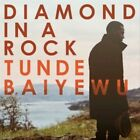 Diamond in a Rock by Tunde Baiyewu (CD, Mar-2013, Waking Dreams)