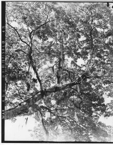 LOT 21 TARZAN FINDS A SON 8 x 10 B/&W photo Behind-the-scenes