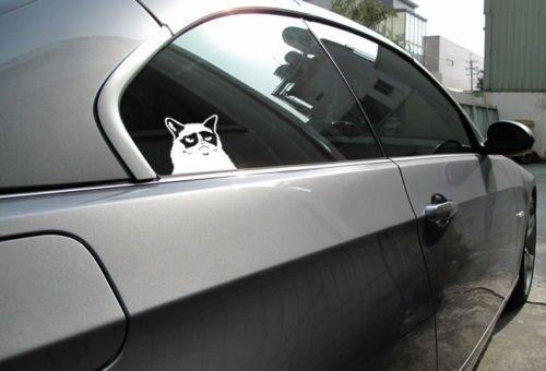 Grumpy Cat Funny Truck Hunting Diesel Vinyl Decal Sticker iPad Nope Hates