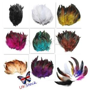 100pcs-Beautiful-Rooster-Pheasant-Tail-Feathers-Costume-DIY-Decoration-5-7-Inch