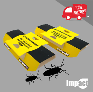 Details about Cockroach Insect Glue Trap PRE BAITED POISON FREE ants earwigs woodlice bed bugs