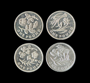 one pound coin flowers