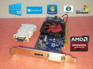 HP-z210-z240t-z400-z420-DVI-1GB-HD-Video-Graphics-Card-Windows-10-8-8-1-7