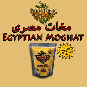 Egyptian-Moghat-Hot-Drink-w-Turmeric-Strengthens-Bones-amp-Nursing-Mom