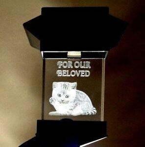 SOLAR LED PET MEMORIAL 3D CRYSTAL LIGHT - CAT