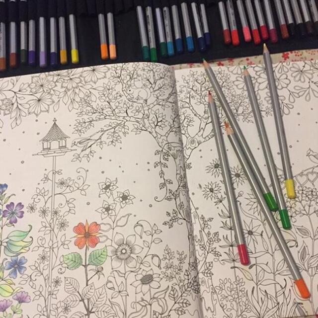 Kids Adult Secret Garden An Inky Treasure Hunt Coloring Book By Johanna Basford